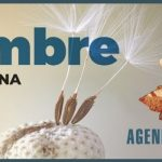 Agenda – 2a quinzena setembre